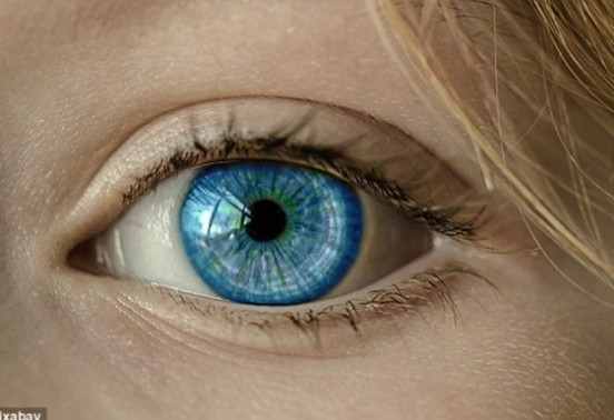 Google predicts heart diseases by studying retina